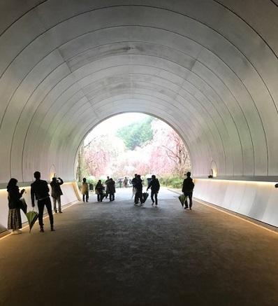 北野をどりのお客様・国宝曜変天目・MIHO MUSEUMへ。_f0181251_18095393.jpg