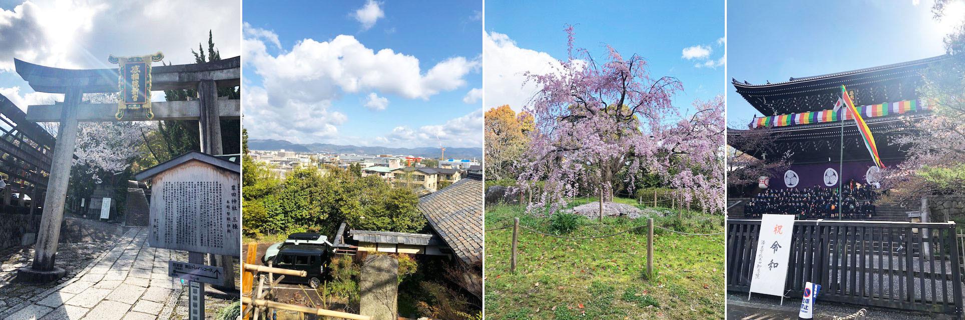 花冷えつづき、お花見が長く楽しめた今年の桜。〔左京区・東山区…桜コレクション〕_b0215856_17065544.jpg