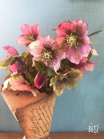 春ですね~・・・(*^^*)_b0347262_00211437.jpg
