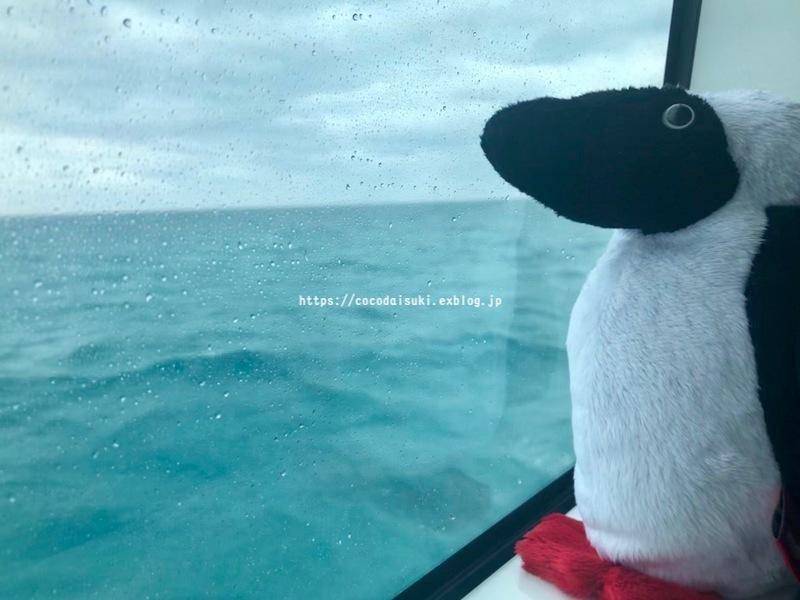 南の島へ行ってきました*2019①*1日目♪_d0367763_20234166.jpg