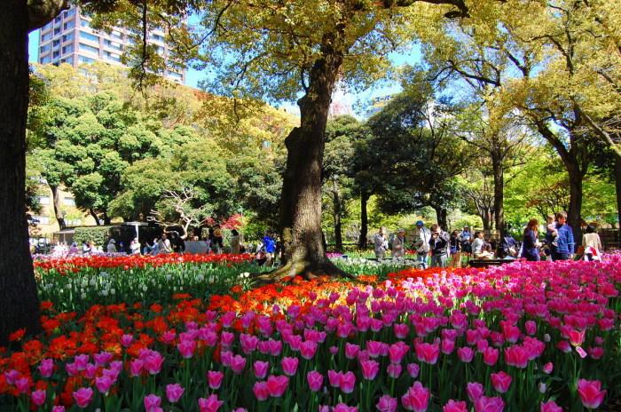 in横浜② 横浜公園_d0172270_14461810.jpg
