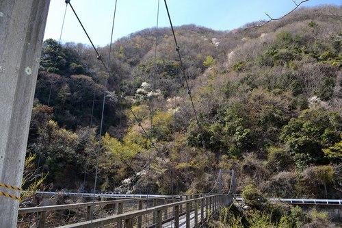 山の吊橋まで_b0102572_12580891.jpg