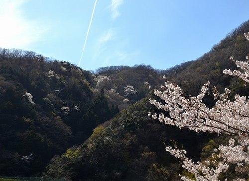山の吊橋まで_b0102572_12583434.jpg