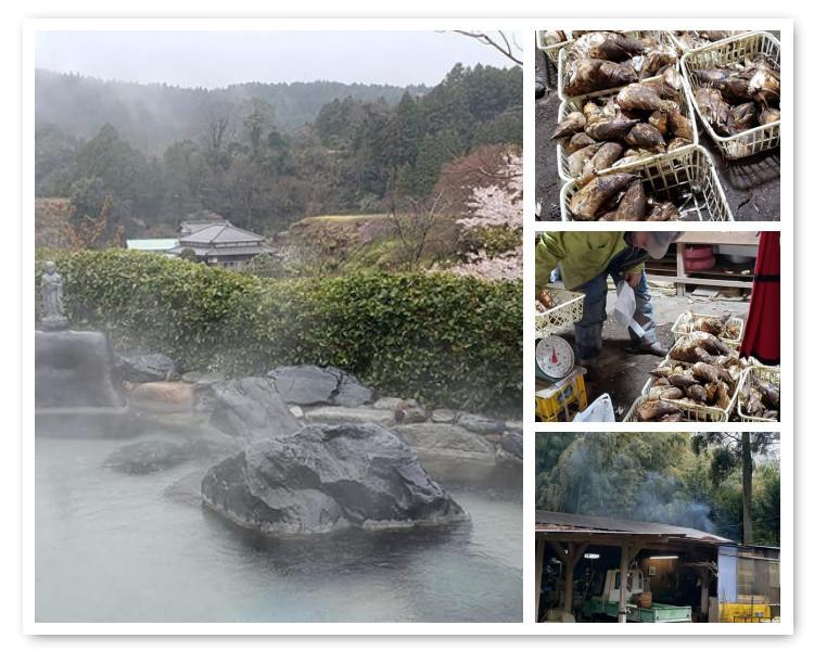 いすみ市で筍と桜と温泉_a0077673_23064722.jpg