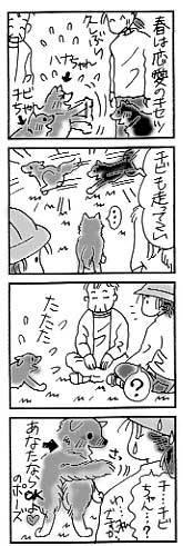 2003年5月8日のシバツレ漫画_b0057675_13241793.jpg