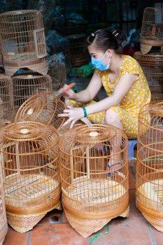 すげ笠を作る村Lang Chuongと鳥籠を作る村Thanh Oai_f0204175_1785077.jpg