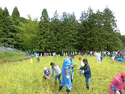 稲刈り体験(月光原小・西根小) _d0247484_10421771.jpg
