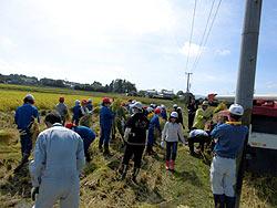 稲刈り体験(下目黒小・枝野小) _d0247484_16324368.jpg