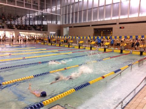 春季水泳競技大会_b0286596_18022134.jpg