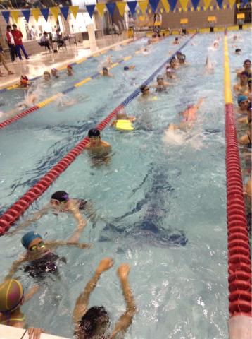 春季水泳競技大会_b0286596_18022311.jpg