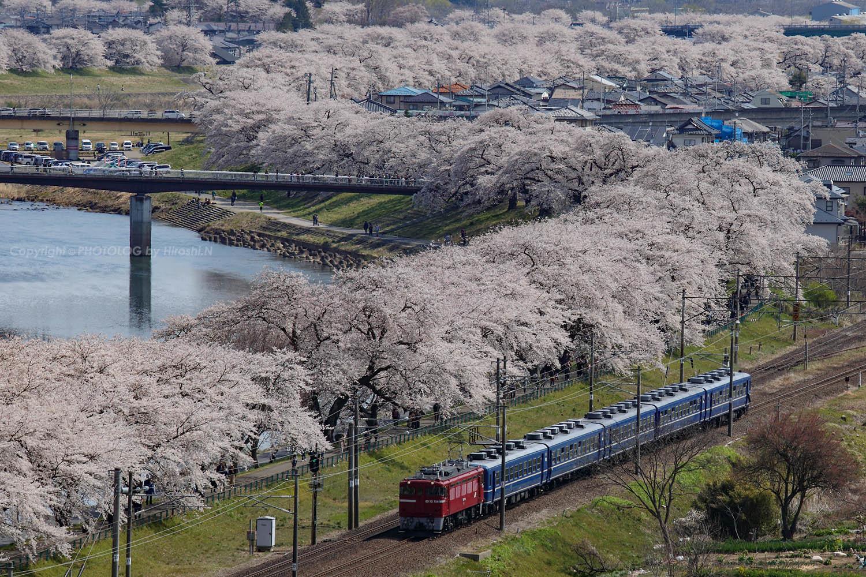 2019/4/13-14 東北本線 - ED75+12系 快速花めぐり号 -_b0183406_23095706.jpg