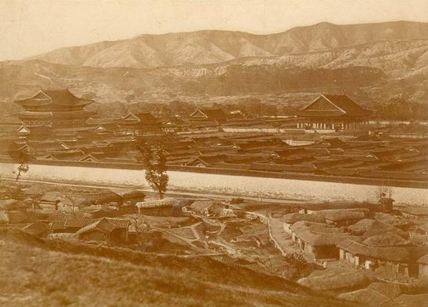 カリフォルニアの砂漠化の原因:福岡正信「スペイン人がフォックステールを持ち込んだから」_a0348309_13283892.jpg