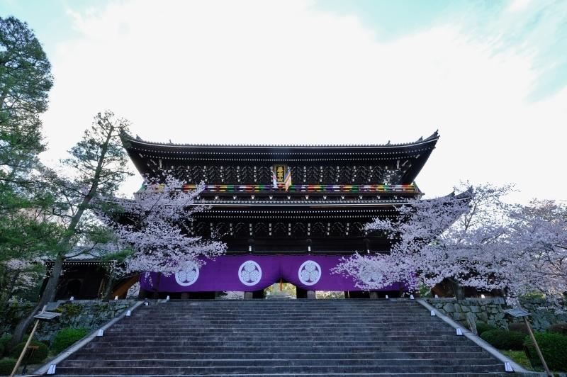 京都の旅 \'19 その1_e0000910_09191007.jpg