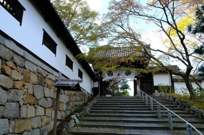 京都の旅 \'19 その1_e0000910_09254426.jpg
