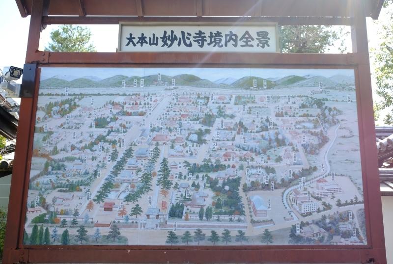 京都の旅 \'19 その1_e0000910_09321672.jpg