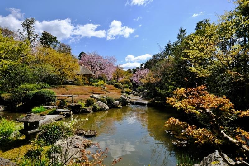 京都の旅 \'19 その1_e0000910_09533938.jpg