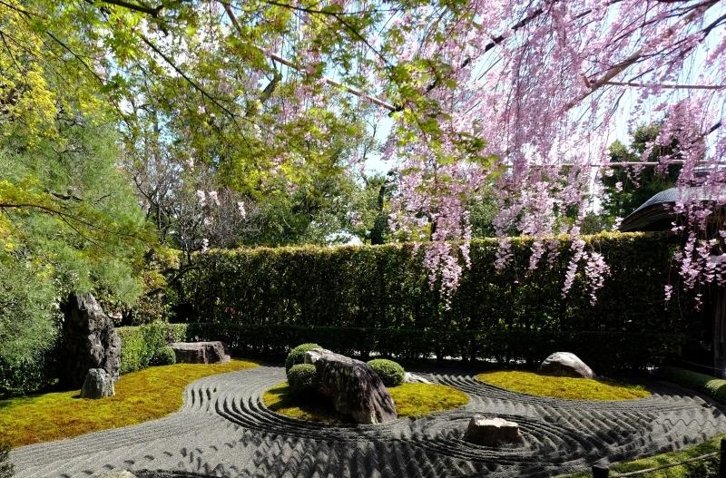 京都の旅 \'19 その1_e0000910_10093396.jpg
