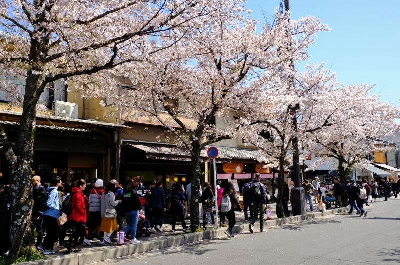 京都の旅 \'19 その1_e0000910_10141493.jpg