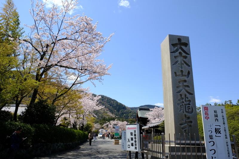 京都の旅 \'19 その1_e0000910_10145063.jpg