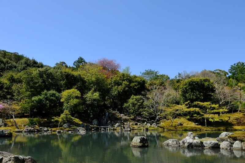 京都の旅 \'19 その1_e0000910_10200539.jpg