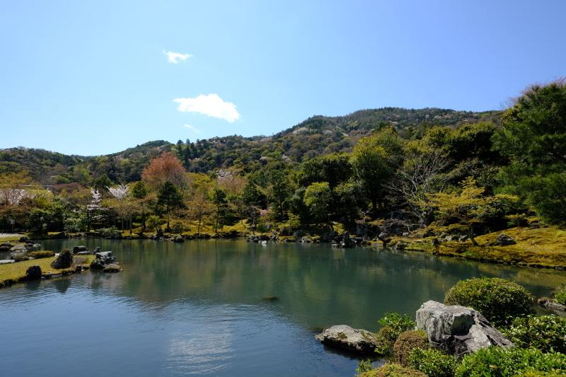 京都の旅 \'19 その1_e0000910_10204343.jpg
