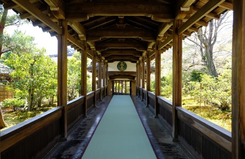 京都の旅 \'19 その1_e0000910_10234509.jpg