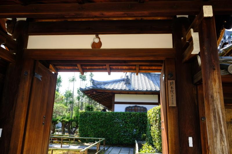 京都の旅 \'19 その1_e0000910_11083767.jpg