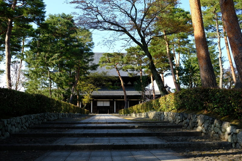 京都の旅 \'19 その1_e0000910_11310497.jpg