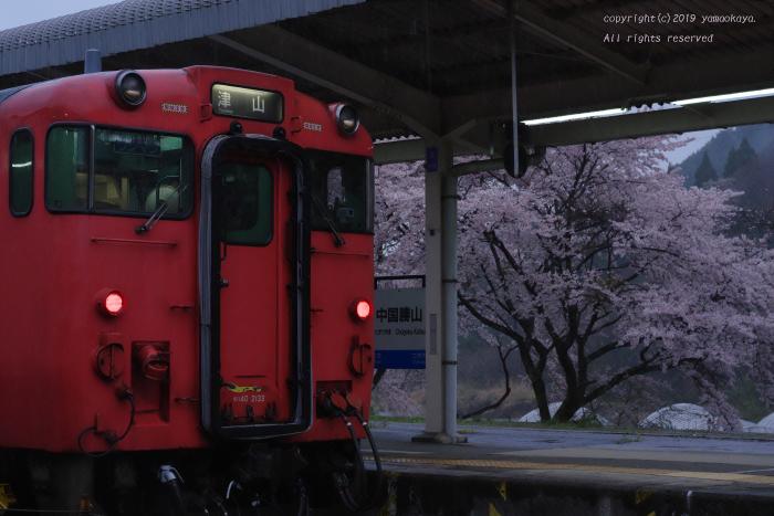 d0309612_20032052.jpg