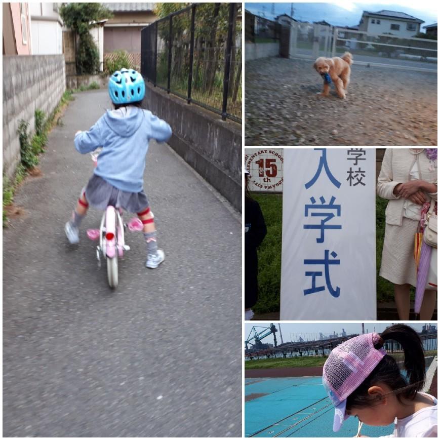 コマなし自転車に乗れた!!_e0136815_15361533.jpg