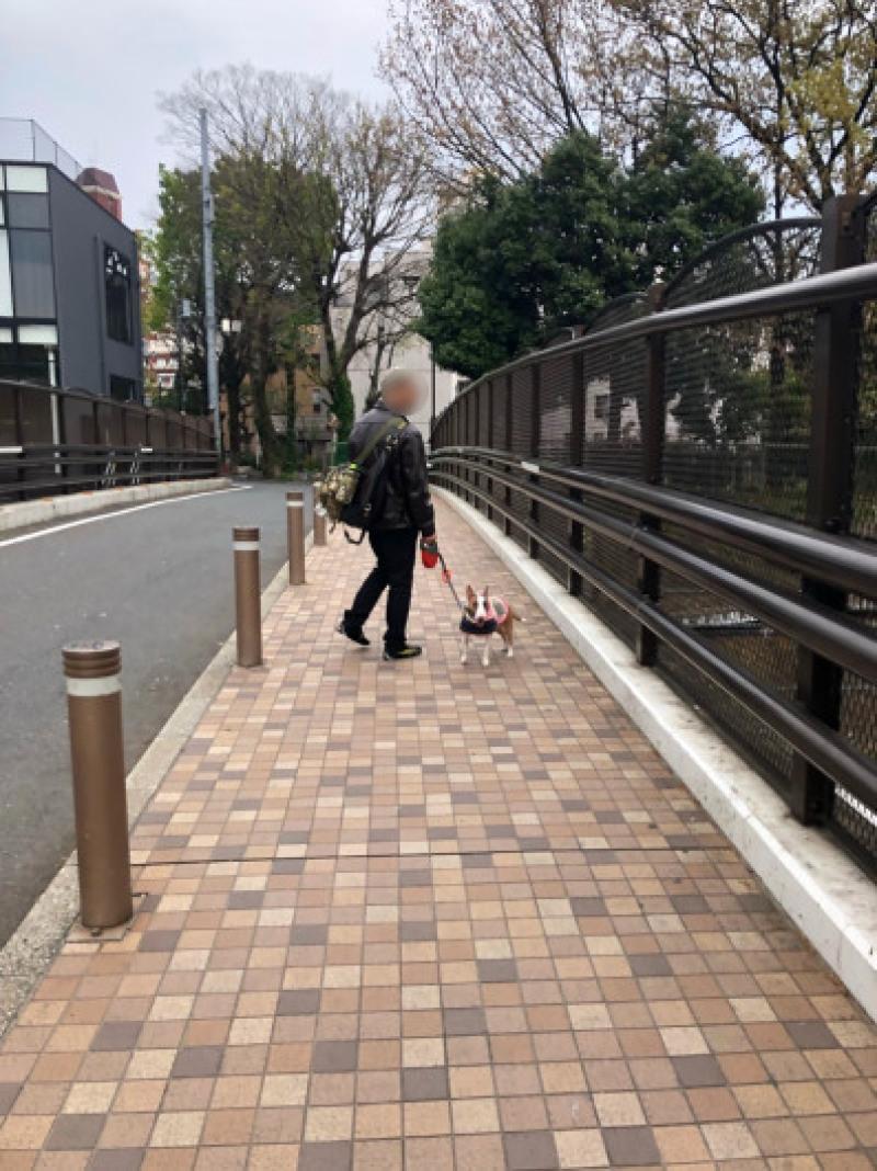 渋谷、原宿散歩した〜_b0310424_11485667.jpg