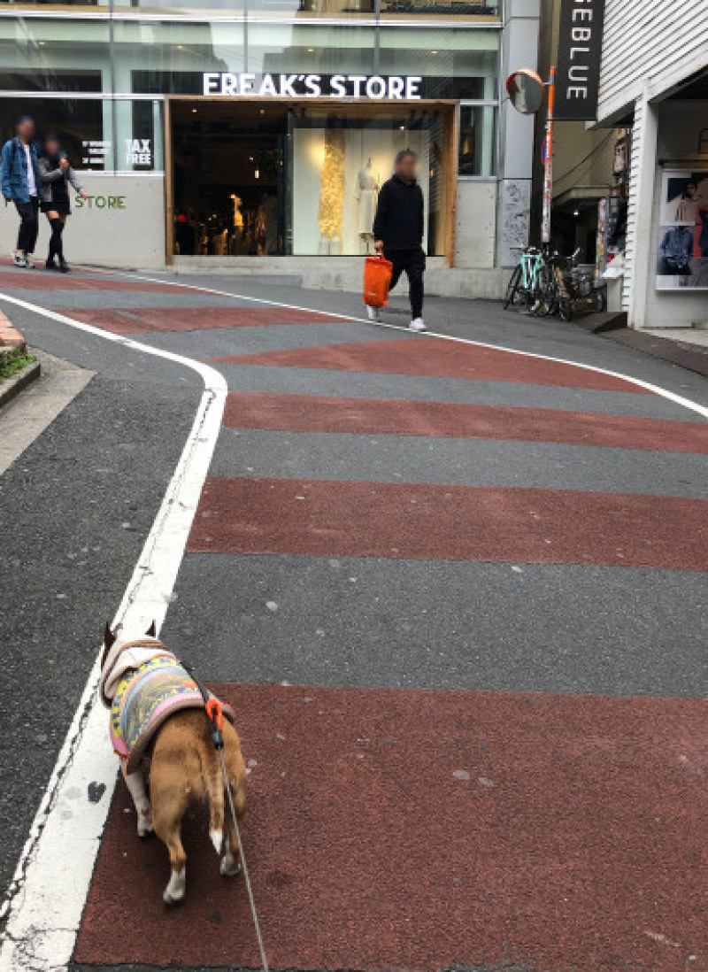 渋谷、原宿散歩した〜_b0310424_11491763.jpg
