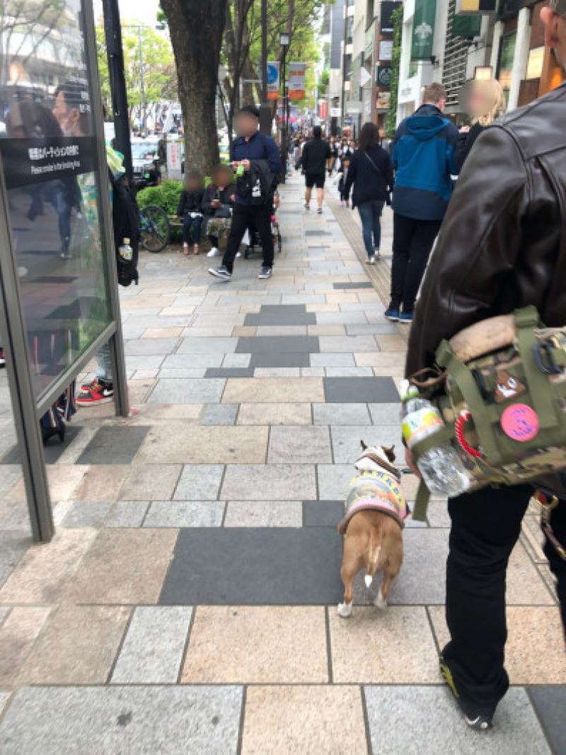 渋谷、原宿散歩した〜_b0310424_11492756.jpg
