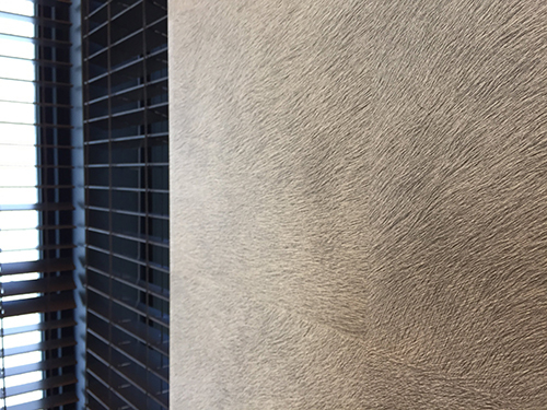 「ビルトインガレージのあるコートハウス」完成見学会を行いました_f0170331_12513126.jpg