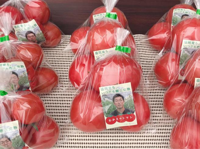 新規就農でトマト施設園芸〈いわて若江農園さん〉_b0199244_15194112.jpg