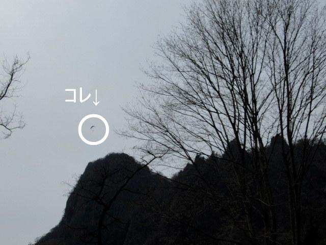 f0236260_15261879.jpg
