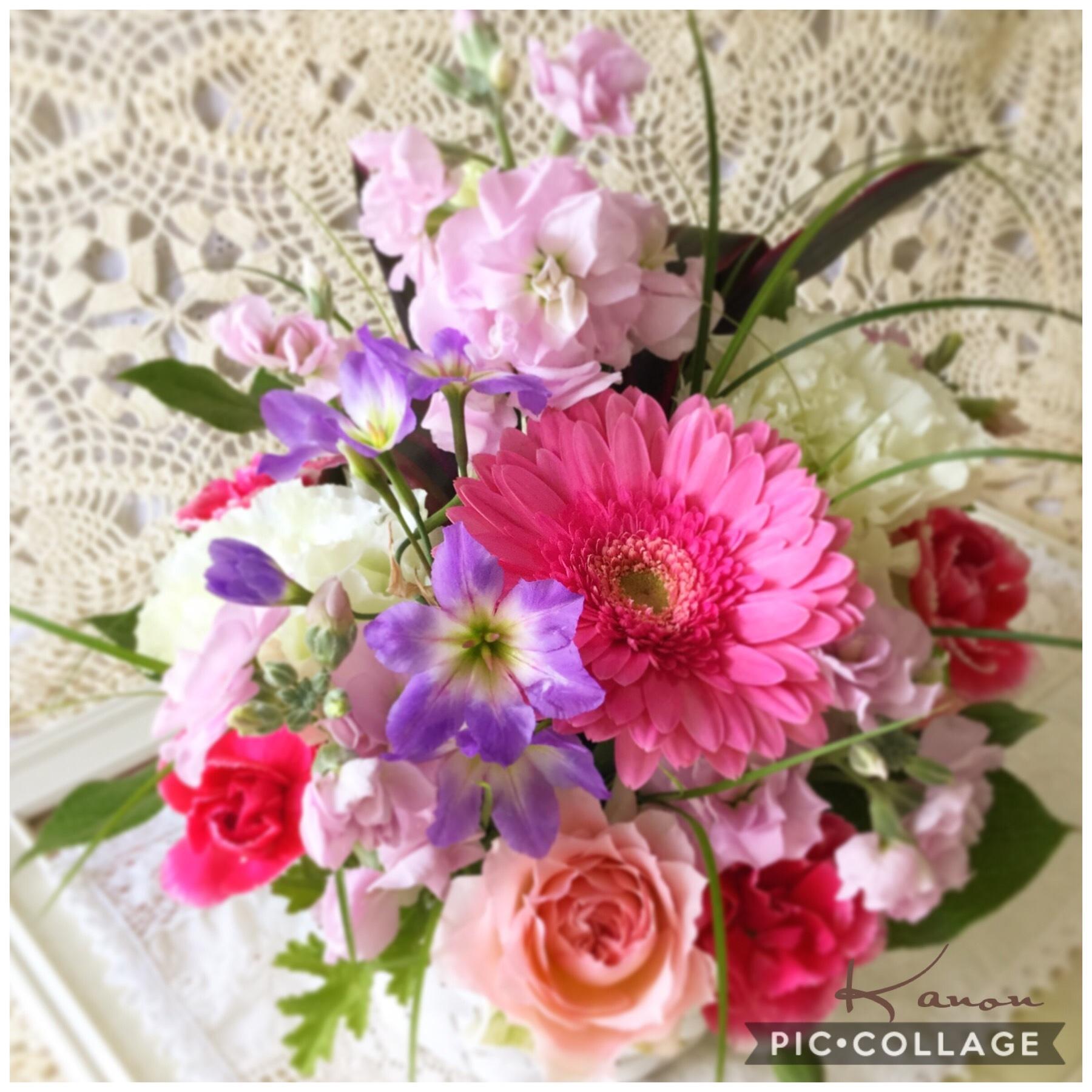花音のお花達_d0147774_17184829.jpg