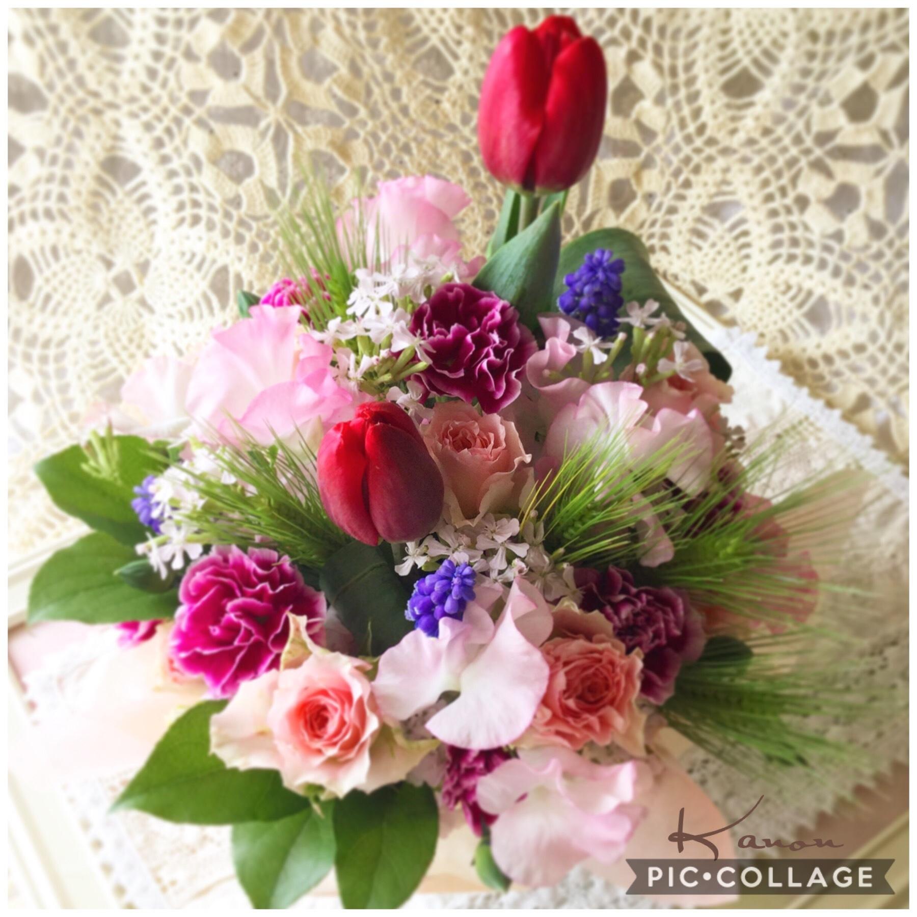 花音のお花達_d0147774_18413569.jpg