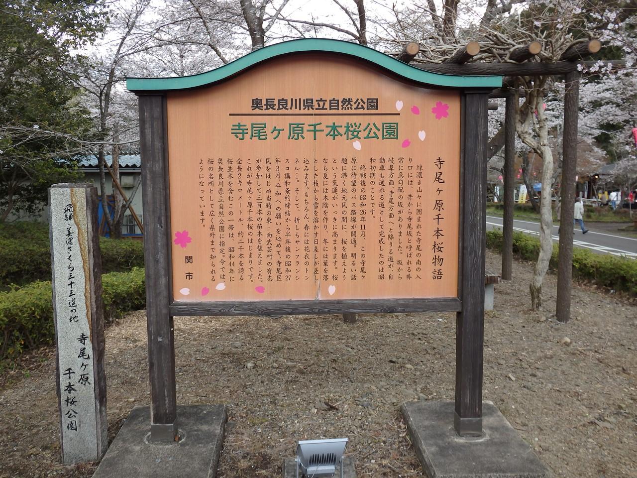 『寺尾ヶ原千本桜公園を歩いて』_d0054276_20571567.jpg
