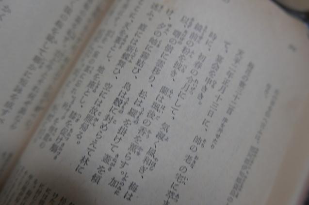 f0250403_16562623.jpg