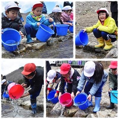 鮭稚魚放流会とシイタケ植菌体験なのだ!_c0259934_09465666.jpg