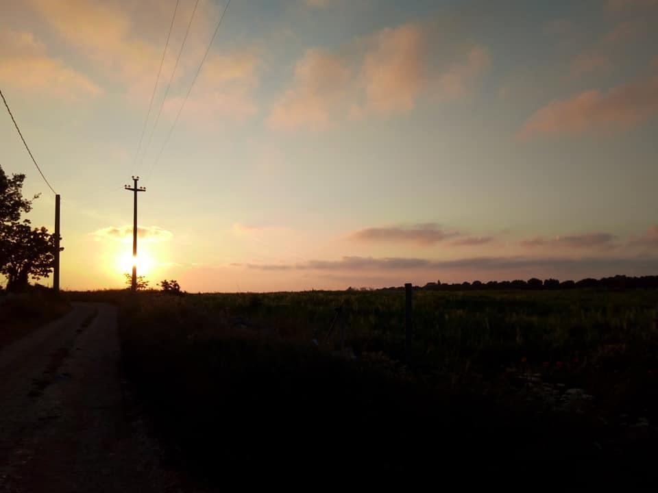 夕方の散歩_b0305039_19090049.jpg