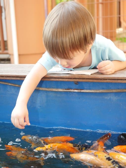お魚さんに会いに_a0318155_13033496.jpg