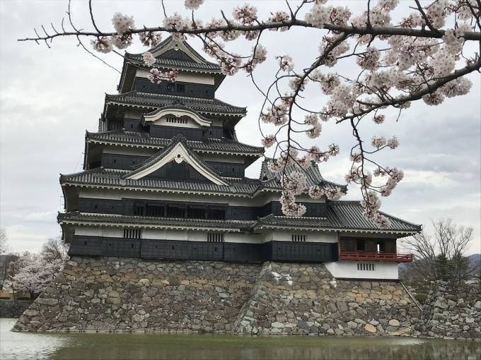 松本城_f0303858_16394009.jpeg