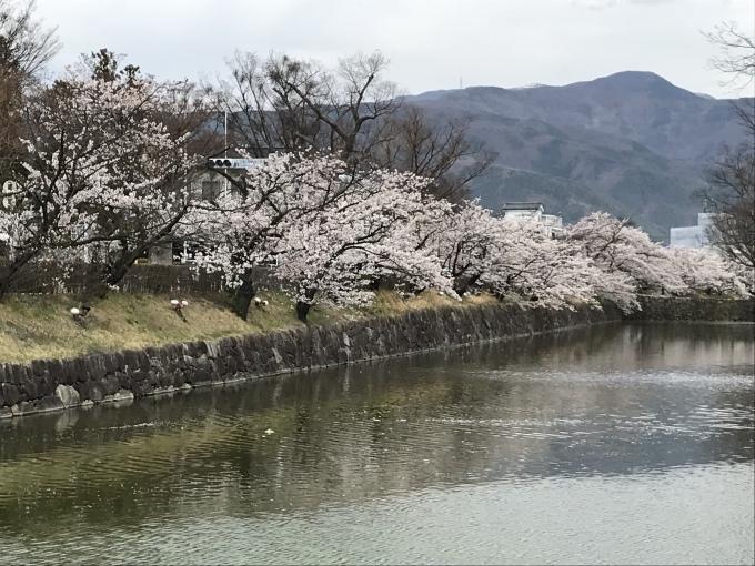 松本城_f0303858_16395563.jpeg