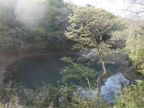 台峯の谷戸の池の浚渫完了、公園オープンは2021年3月末_c0014967_06565567.jpg