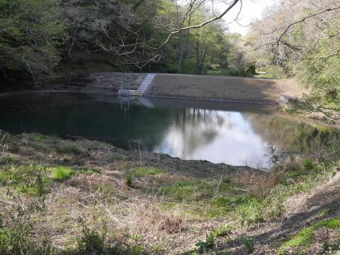台峯の谷戸の池の浚渫完了、公園オープンは2021年3月末_c0014967_06580928.jpg
