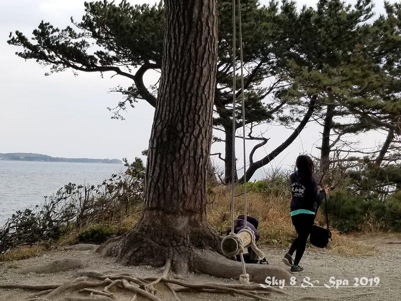 ◆ 車旅で広島へ、その18 タコとフグの島「日間賀島」へ 島内一周編 (2019年3月)_d0316868_22521829.jpg
