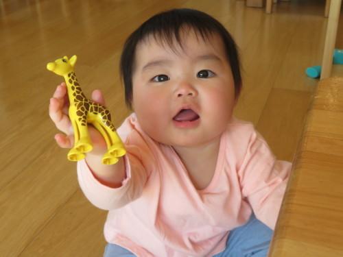 4月 乳児フロア様子_f0327175_13561687.jpg
