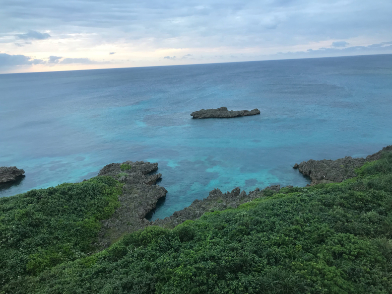 南の島はパクチー天国_f0378589_06423747.jpg